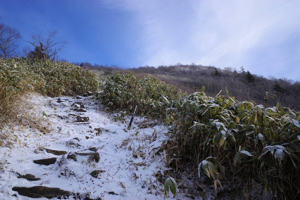 飯縄山 雪の登山道