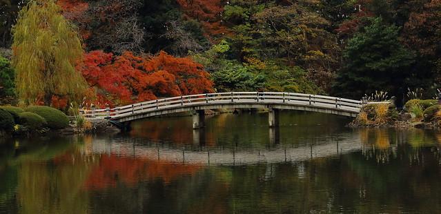 A Bridge at Japanese Garden