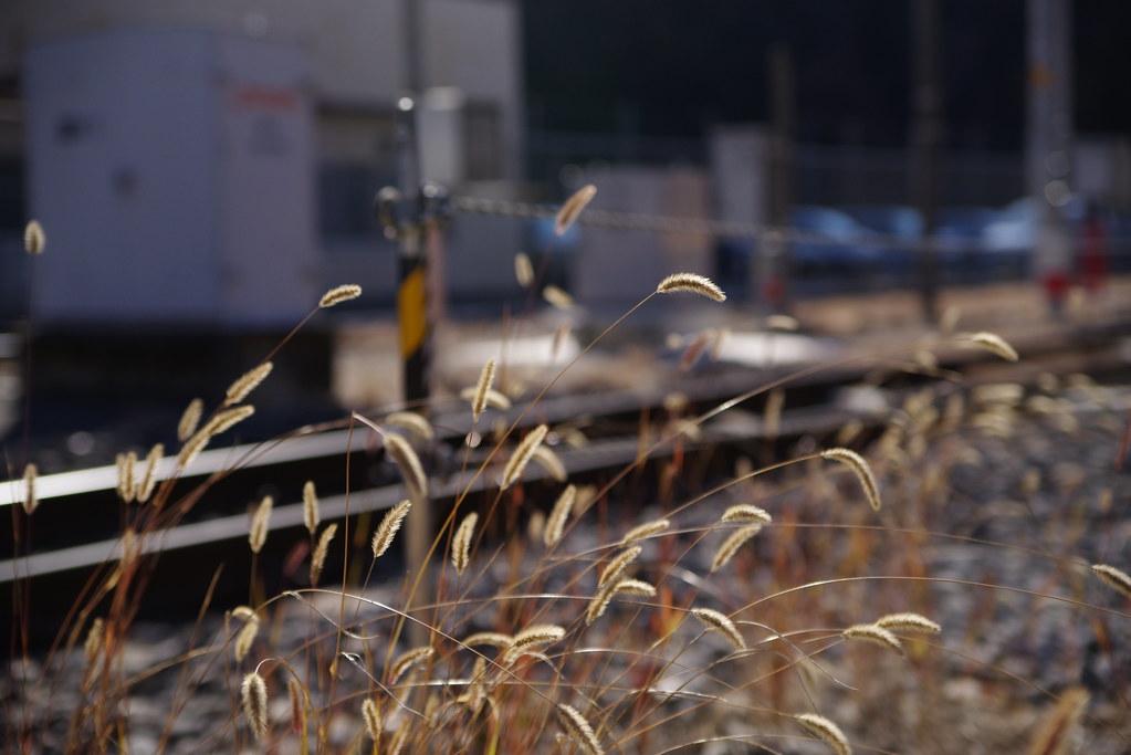 Shimobe onsen station