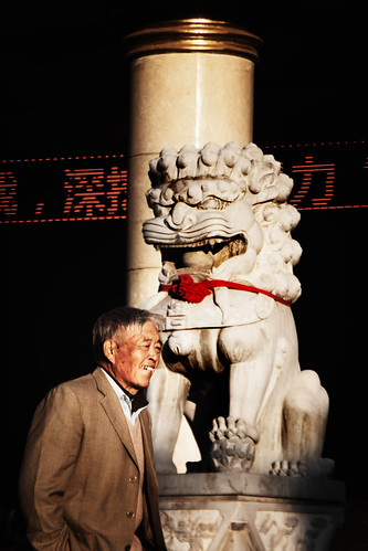 china chinese lion sunset coincidence