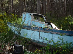 Boat in the Bush