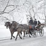 Djurgården, December 17, 2018