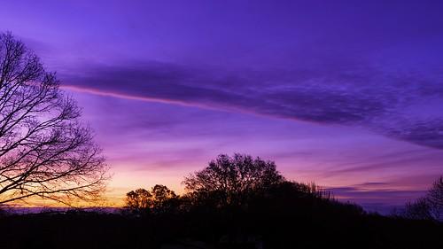 scenic serene sunrise sky tree landscape shadow cloud calm