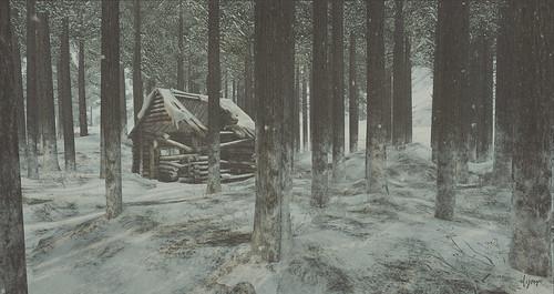 blottie dans la forêt