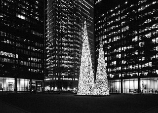 Christmas in the Financial Distric._