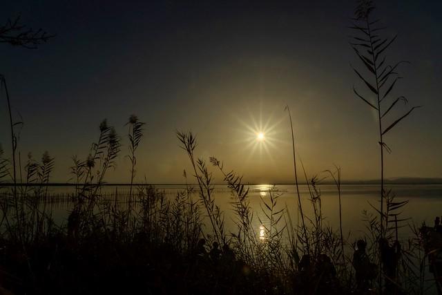 Puesta de sol. Albufera de Valencia