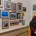 Preston Harris Museum Open Exhibition - photographs