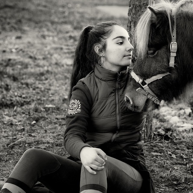Amour de poney.