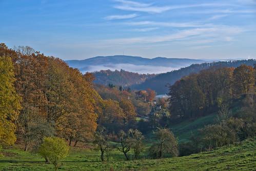 deutschland landschaft rudolstadt wald thuringia thüringen mist fog nebel autumn fall herbst ilce7rm3 sel55f18 darktable saale saaletal