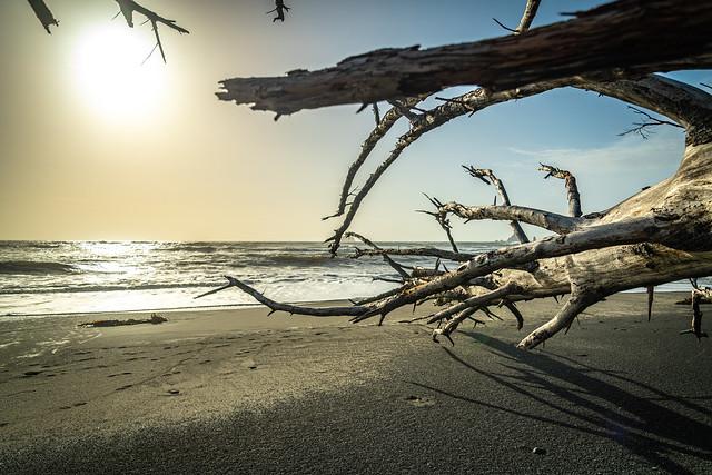Rialto Beach - Olympic National Park - September 2019
