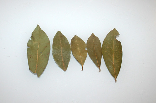 02 - Zutat Lorbeerblätter / Ingredient bay leafs