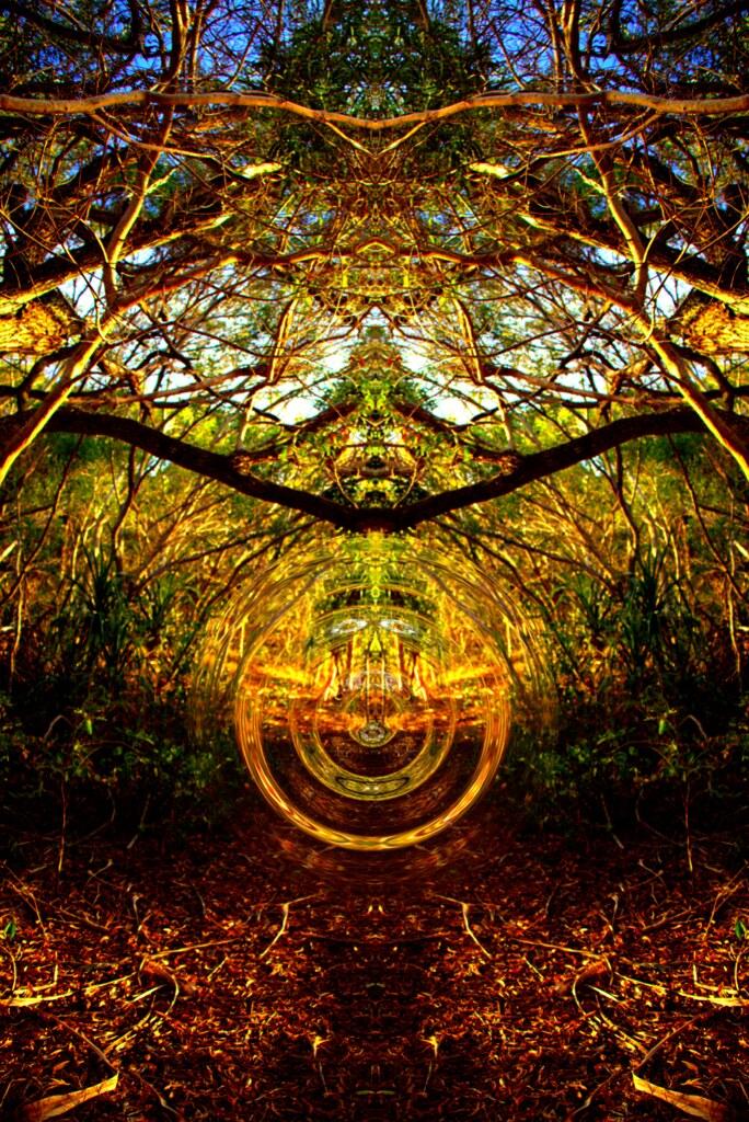 Abstract - Sacred Portal - The secret space program disclosure