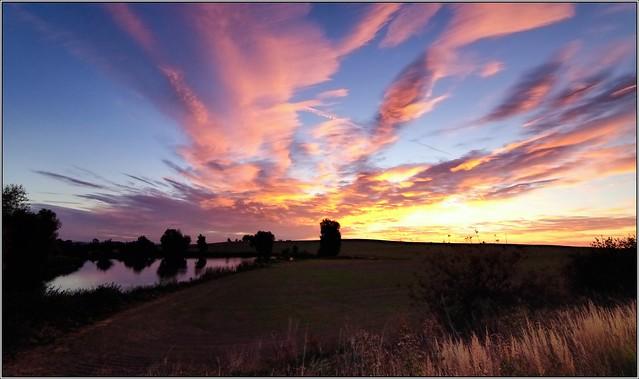 Morning in Moravia