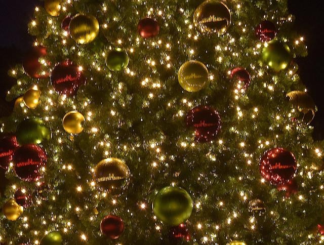 Filoli 19,12,12 XMAS tree balls