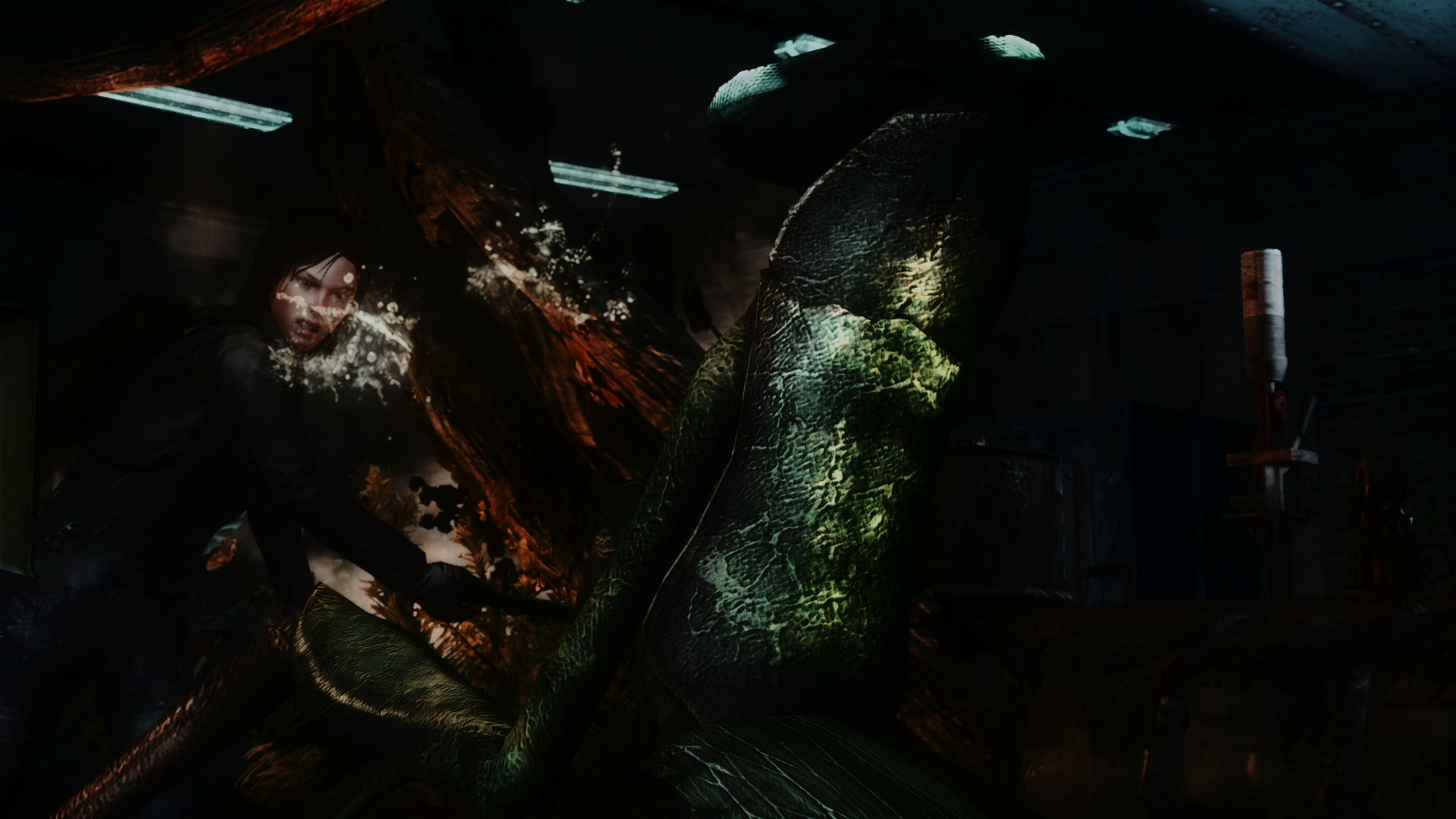 Fallout Screenshots XIV - Page 10 49220129356_4fcb53e153_o