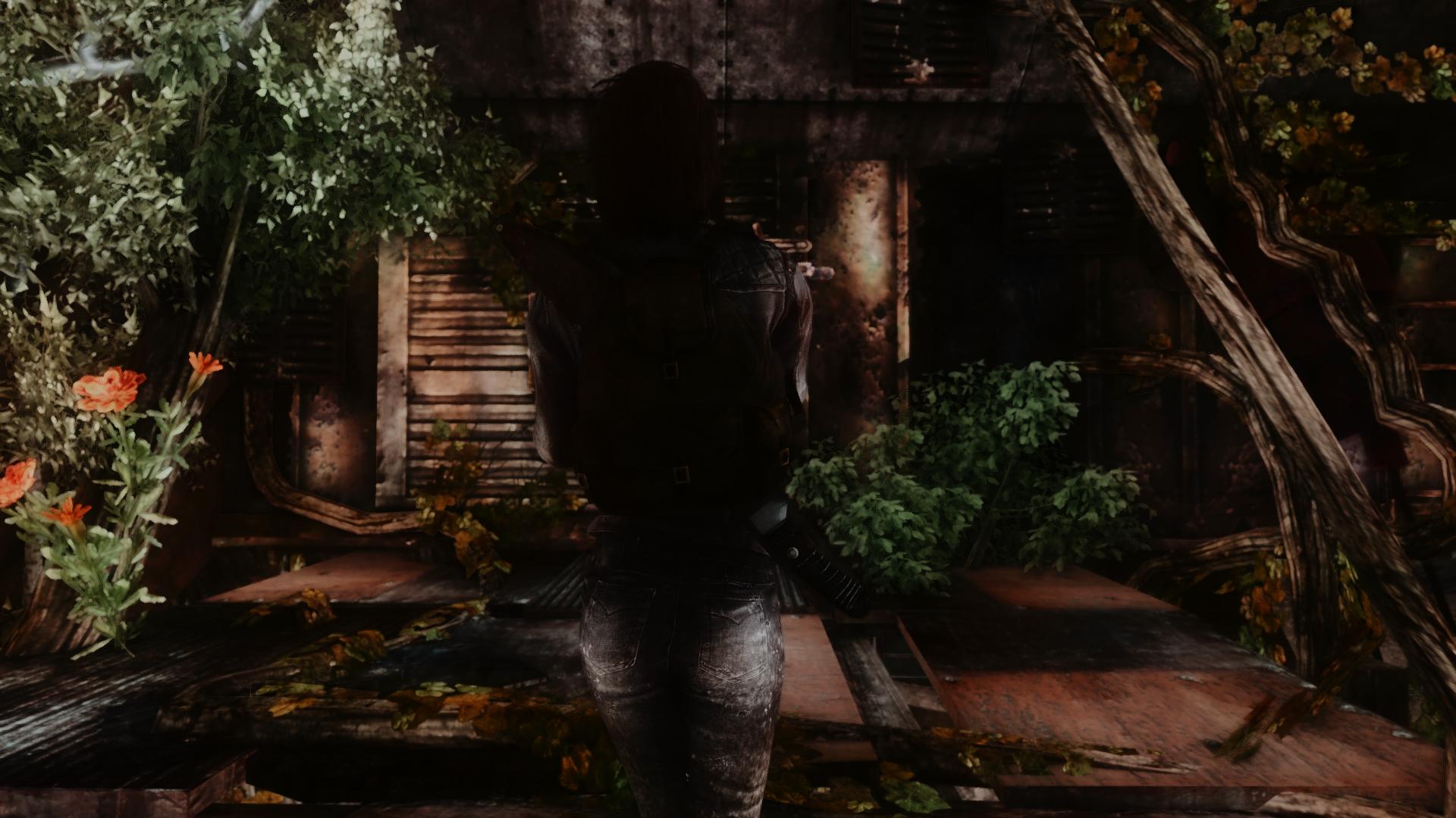 Fallout Screenshots XIV - Page 10 49220130181_a9910efd31_o