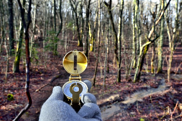 A Compass to Guide My Way As I Walked Through the Forest of the Georgia Blue Ridge Mountains