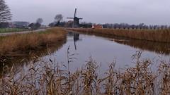 ..Onderweg een sombere dag in de polder ..