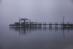Fog On Indian River