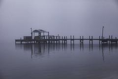 Fog On Indian River
