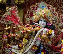 ISKCON Juhu Sringar Deity Darshan on 15th Dec 2019