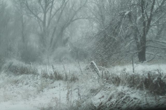 Snowstorm in Aurora
