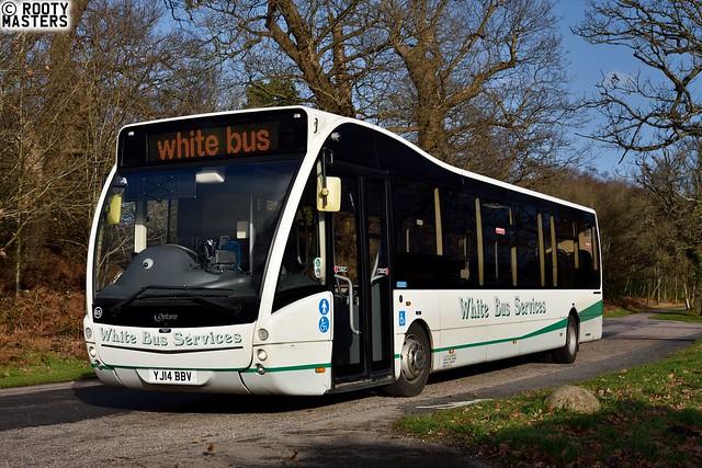 White Bus Versa in Windsor Great Park