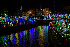 Colorful Christmas Trees On River