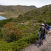 2019 Patagonia Chile - IMG_3890.jpg by hansk