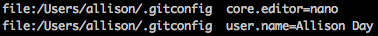 Screenshot of what I see with the git config --list command