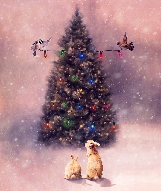 It's Almost Christmas!