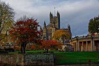 Bath Abbey surrounded by Autumnal trees