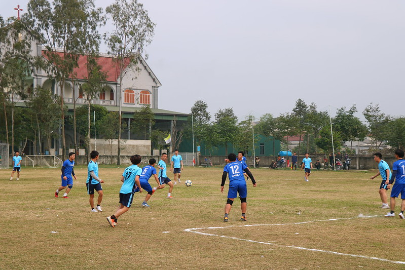 TCV (9)