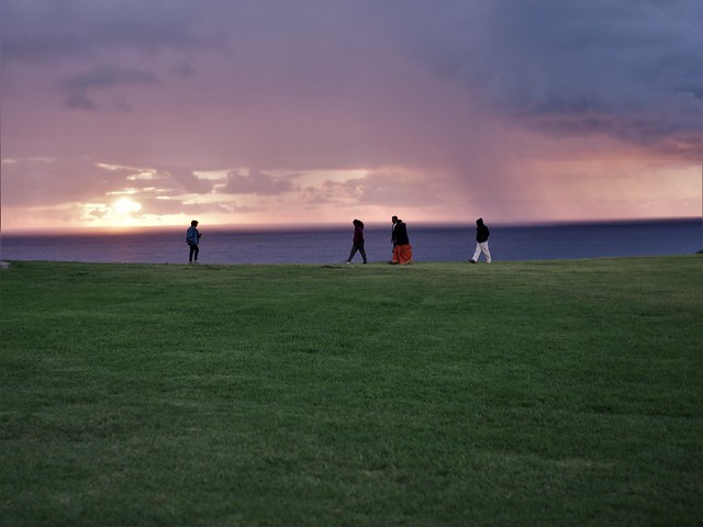 Group Walking Through The Green Grass and Admiring The Sunset