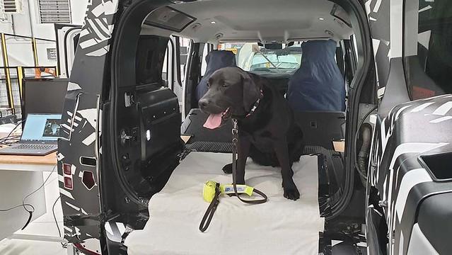 jaguar-land-rover-testet-hundetauglichkeit-mit-spezial-pfote