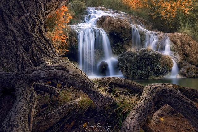 Last lights of Autumn - Lagunas de Ruidera Natural Park (Ossa de Montiel, Albacete, Spain)