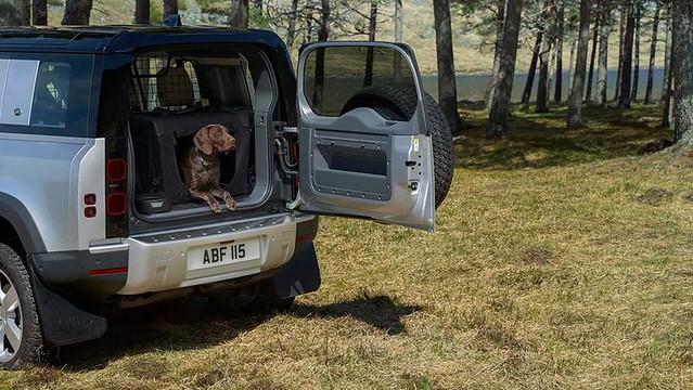 jaguar-land-rover-testet-hundetauglichkeit-mit-spezial-pfote (2)