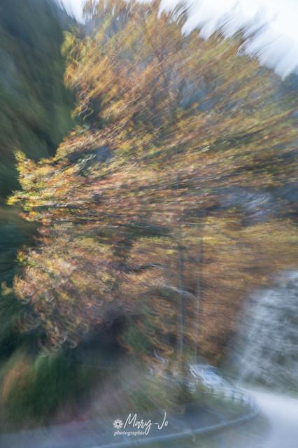 Flou passant ...  Blurring passing ...