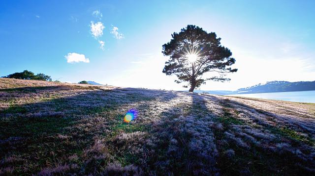 Bí kíp Phượt Đà Lạt toàn tập - Thành phố Sương Mù cho những tâm hồn mộng mơ (7)