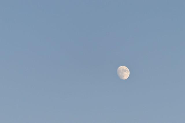 夕暮れ時の東の空
