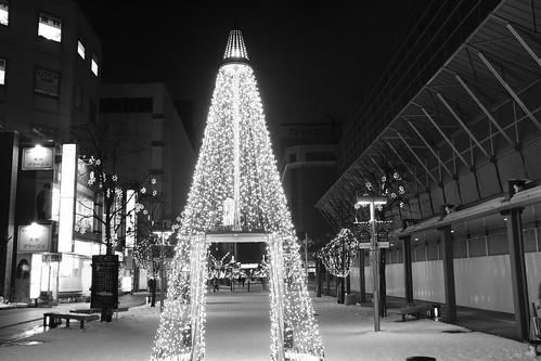 16-12-2019 Asahikawa (17)