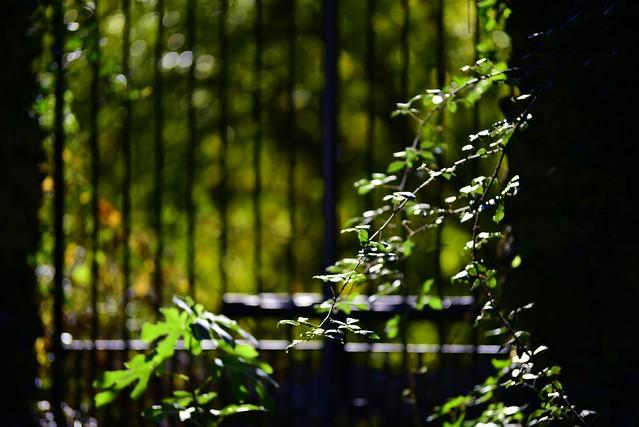 Quinta da Meia Eira