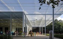 Brochstein Pavilion, Rice University. Houston