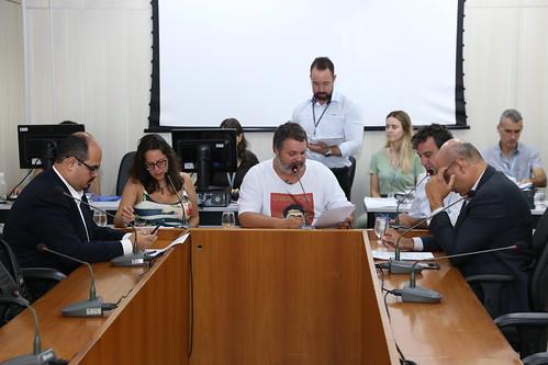 42ª Reunião Ordinária - Comissão de Direitos Humanos e Defesa do Consumidor