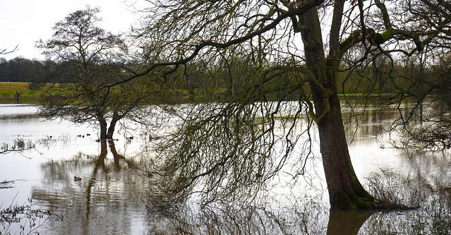 Light on Floods