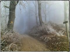 Seppelweg (Mist)