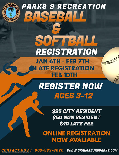 Copy of Baseball Tournament Flyer Template - Made with PosterMyWall