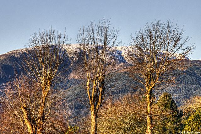 Morning light; Sgorach Mor, Argyll, Scotland