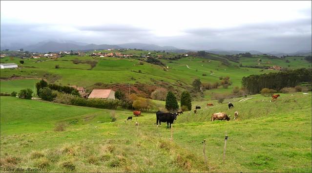 Llueve en Cantabria