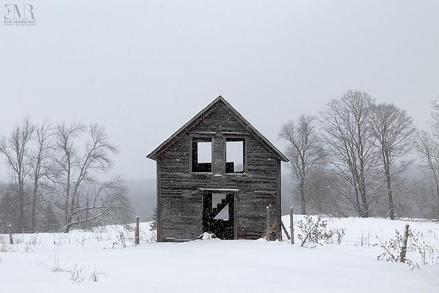Cabane abandonnée - Beauté Figée FB & IG